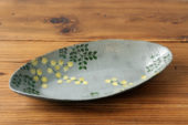 shr-daen-mimoza-hai